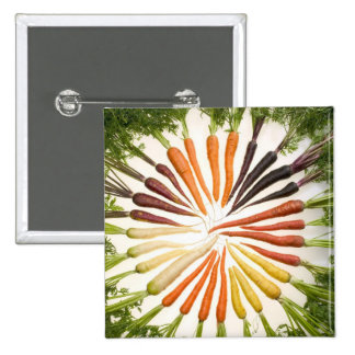 Carrot Color Wheel Pins