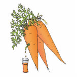 carrot juice cut outs