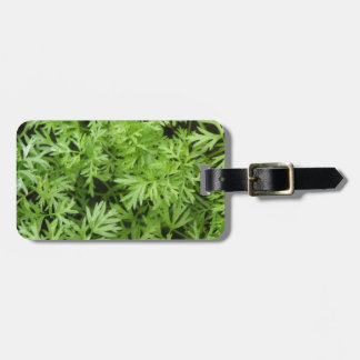 Carrot Tops Custom Luggage Tag