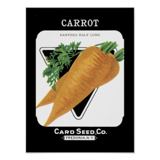 Carrot Vintage Seed Packet Poster