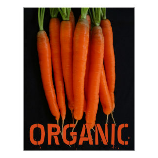 Carrots Fresh from the Garden Poster