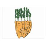Carrots Postcards