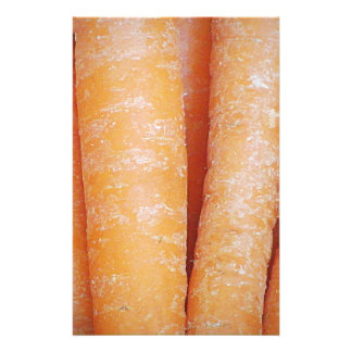 Carrots (Vertical) Stationery