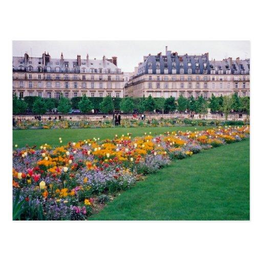 Carrousel Gardens Postcard
