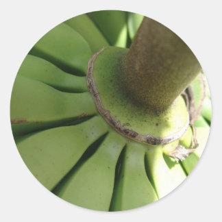 Carrusel del plátano pegatina redonda