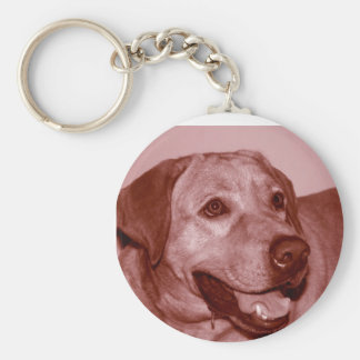 Carry Me Wherever You Go!!! Basic Round Button Keychain