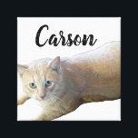 "Carson Canvas Print<br><div class=""desc"">image of my kitty</div>"