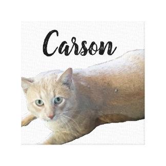 Carson Canvas Print