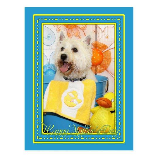 Carson - West Highland Terrier -6 Postcard