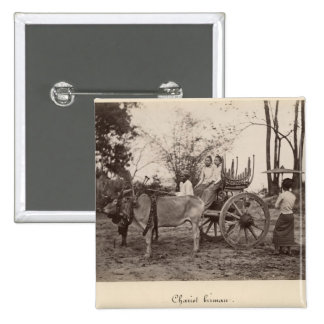 Cart pulled by two oxen at Mandalay, Burma Pinback Button