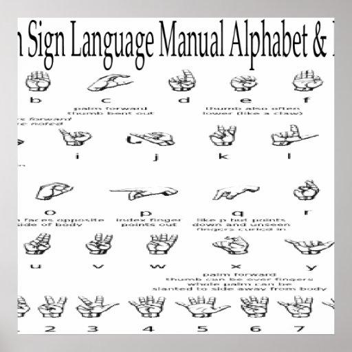 Carta americana de los &Numbers del alfabeto del A Póster