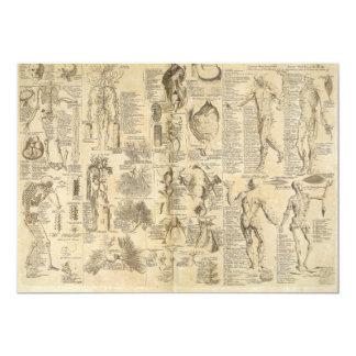 "Carta anatómica de Cyclopaedia 1728 Invitación 5"" X 7"""