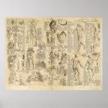 Carta anatómica de Cyclopaedia 1728 Poster