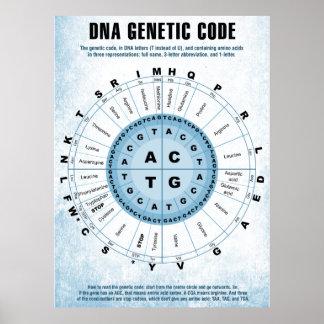 Carta de código genético de la DNA Póster