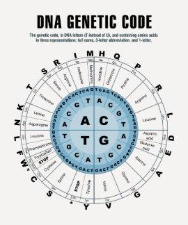 Carta de código genético de la DNA Remera