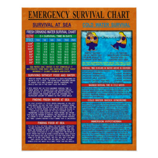 Carta de la supervivencia de la emergencia poster