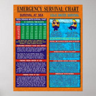 Carta de la supervivencia de la emergencia póster