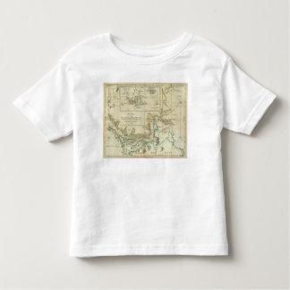 Carta de los Estrecho de Magallanes Camisas