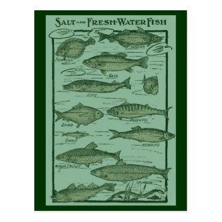 Carta de los pescados de la sal y de agua dulce postal
