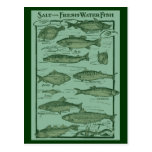 Carta de los pescados de la sal y de agua dulce tarjeta postal