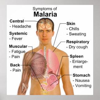 Carta de los síntomas de la enfermedad transmitida póster
