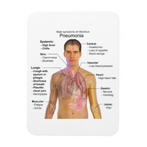 Carta de los síntomas de la pulmonía imán foto rectangular