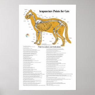 Carta de puntos de la acupuntura del Acupressure d Posters
