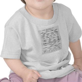Carta del reconocimiento del acorazado de la camiseta