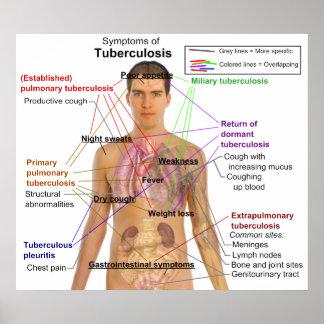 Carta del síntoma de la tuberculosis en seres huma poster