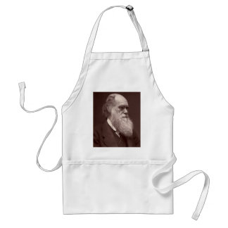 Carte de visite photograph of Charles Darwin Adult Apron
