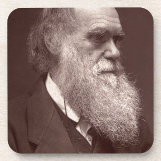 Carte de visite photograph of Charles Darwin Beverage Coasters