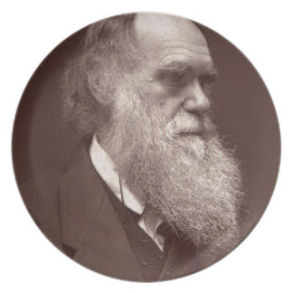 Carte de visite photograph of Charles Darwin Dinner Plates