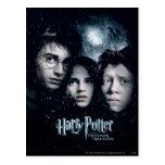 Cartel de película de Harry Potter Postales