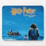 Cartel de película de Harry y del International de Tapete De Ratón
