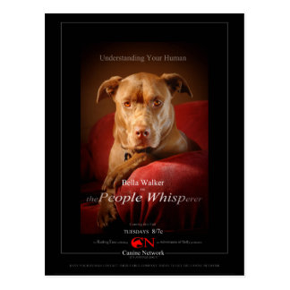 Cartel de película del perro de la mezcla del hoyo postal