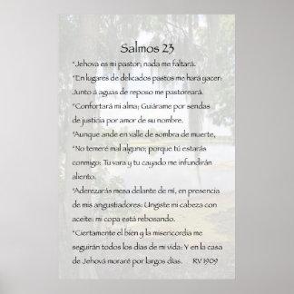 Cártel de Salmos 23 Póster