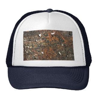 Cartelera y grapas ilustrativas gorra