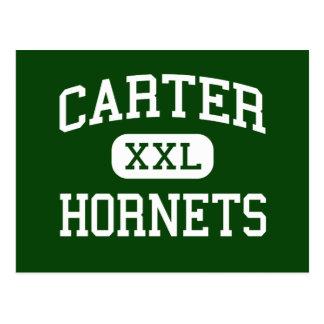 Carter - Hornets - High - Strawberry Plains Postcard