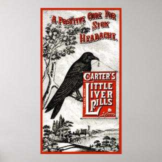 Carter s poco anuncio de las píldoras del hígado posters