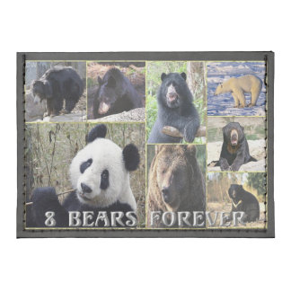 Cartera de 8 osos para siempre tarjeteros tyvek®
