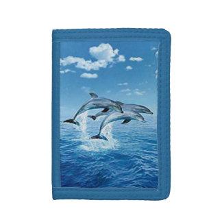 Cartera de los delfínes