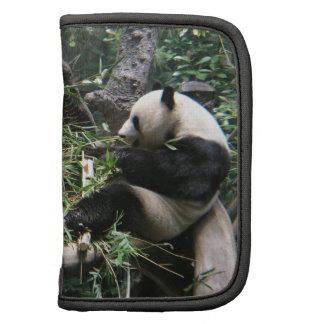 Cartera de los osos de panda planificadores
