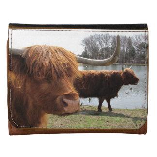 Cartera escocesa del ~ del ganado de la montaña