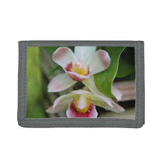 Cartera - orquídea en abanico