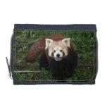 Cartera - panda roja