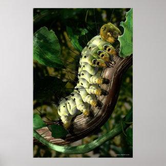 Cartero Caterpillar Póster