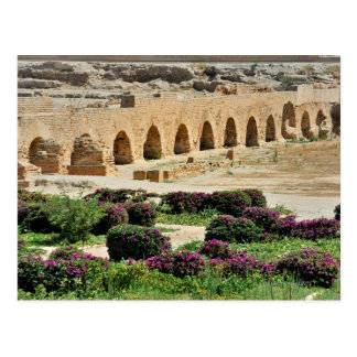 Carthage ancient Punic city, destroyed and Postcard