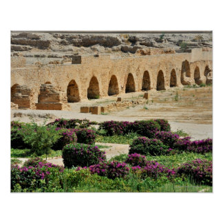Carthage ancient Punic city, destroyed and Posters