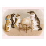 Cartographer Cat and Three Kittens Post Cards