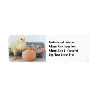 Cartón del polluelo y del huevo con el huevo de Br Etiquetas De Remite